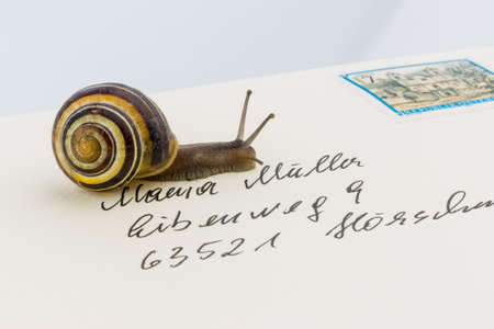 slower: a snail on a letter. photo icon for slow breifzustellung. smail