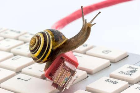 internet  broadband: symbolic photo for slow internet connection. broadband connection is not available everywhere.