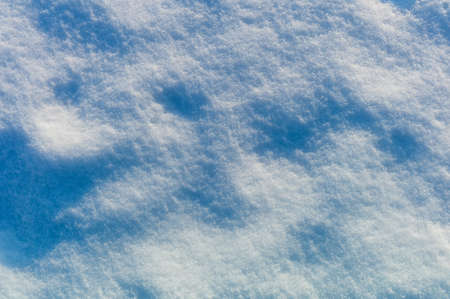 animal tracks: animal tracks covered with snow, symbol photo for winter, attention and flair Foto de archivo