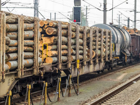 wood railroad: wagon of railroad loaded with wood. freight train. freight rail Stock Photo