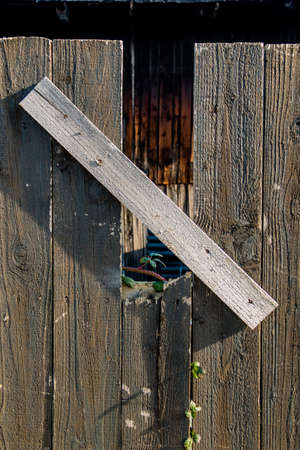 rehabilitated: sapling and old wooden fence, symbolizing life, growth, new start, strength, hope Stock Photo