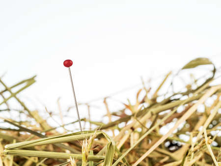 unsolvable: a needle is in the haystack. icon photo of a proverb for challenge, search and locate.