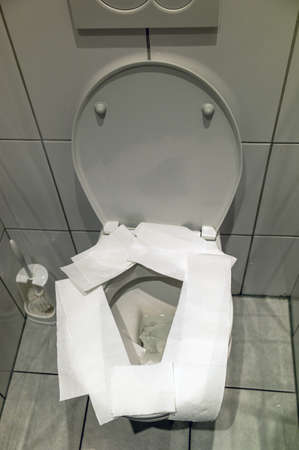 bowel movement: for hygienic reasons, the seat of a toilet before use is covered with toilet paper