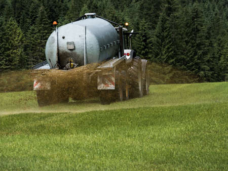 manure: a farmer goes with manure on a field for fertilizing