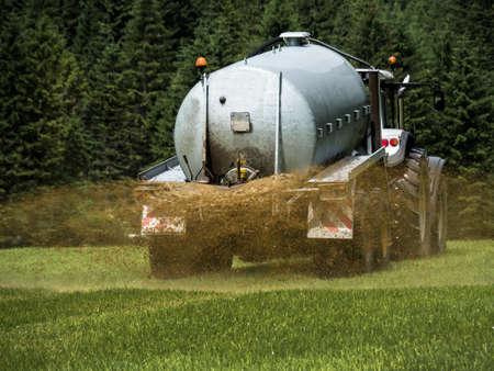 fertilizer: a farmer goes with manure on a field for fertilizing