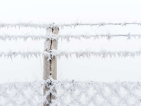 remand: in the cold in winter, frost forms