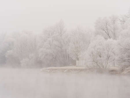 onset: landscape with trees and rime in cold weather in winter. typical winter image as a background.