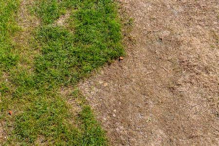 freetime activity: broken lawn Stock Photo