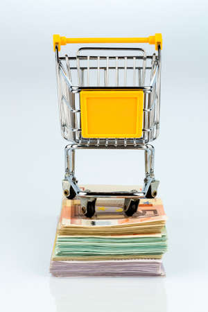 consumerist: shopping cart is on banknotes, symbolic photograph for shopping, purchasing power, money printing and inflation