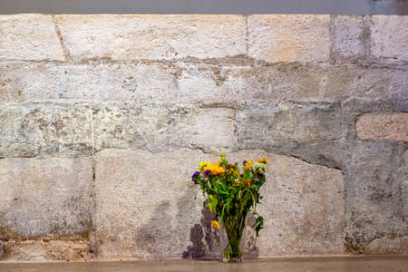 flowers in front of a stone wall