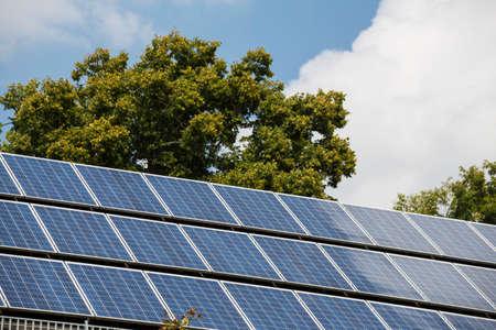 Panneaux solaires et arbre Banque d'images - 77736996