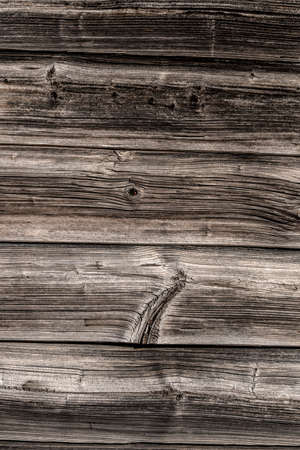 knothole: wooden wall