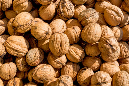 many walnuts close-up Stock Photo