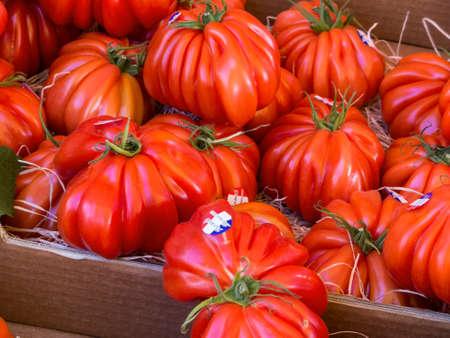 fresh meat tomatoes Stock Photo
