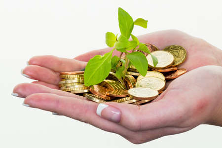 money and plant. save icon photo