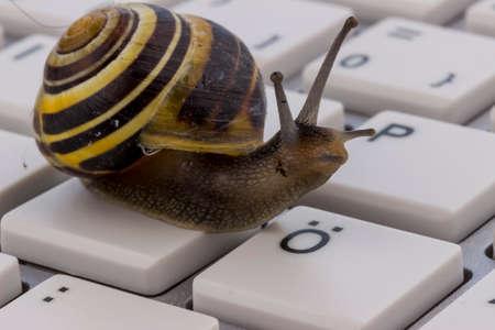 slow internet access