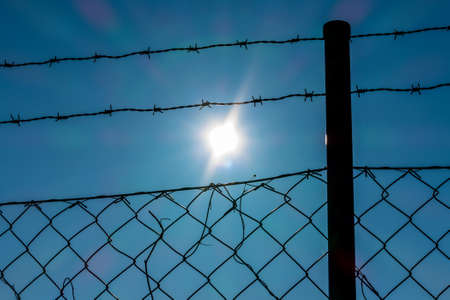 barbed wire and sunshine
