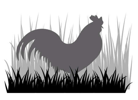 A vector illustration of Rooster or Cock chicken with grass silhouette sign