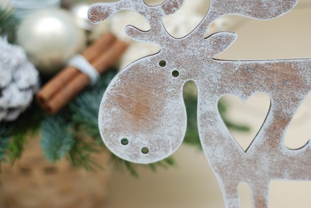Close Up Christmas Reinder with Fir branch on Back Blured background