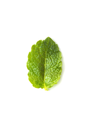 Fresh mint isolated on white background. Leaves for coktails or fresh fruits. Summer tempalte for design, Food mockup Banque d'images - 120593250