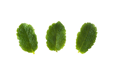 Three fresh mint isolated on white background. Leaves for coktails or fresh fruits. Summer tempalte for design, Food mockup Banque d'images - 120593330
