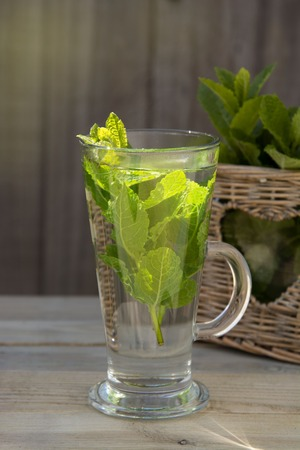 Summer fresh mint tea. Glass cup of green tea with mint leaves wooden