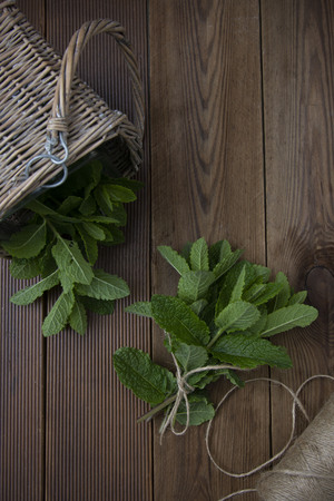 Close up mint leaves on wooden Banco de Imagens