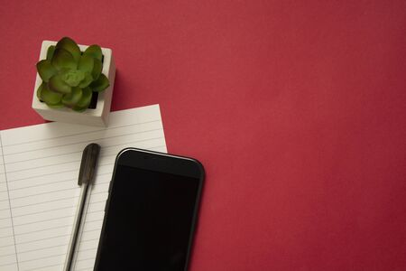 Workplace with smartphone, decorative plant succulent and a pen. Red colorful background. Business and education. Copy space.