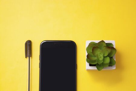 Workplace with cup of coffee, smartphone, decorative plant succulent and a pen. Colorful yellow background. Business and education. Copy space.