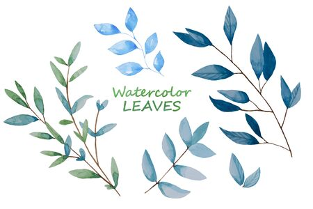 Hand drawn leaves, watercolor illustration. Green and blue spring, easter botanical elements isolated.