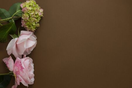Floral mock up. Pink roses frame isolated on brown background with copy space. Stock Photo