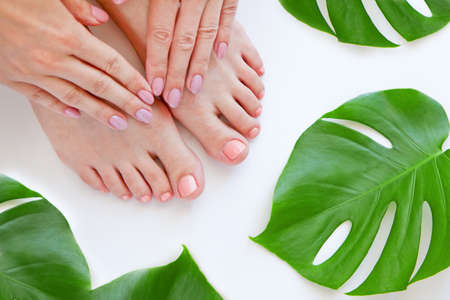 Healthy Legs. Spa. Skincare. woman legs and Hands isolated on white. Eco manicure and natural cosmetology concept