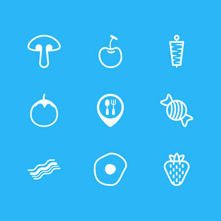 fried: Vector Illustration Of 9 Meal Icons. Editable Pack Of Scrambled Egg, Berry, Berry Type And Other Elements.