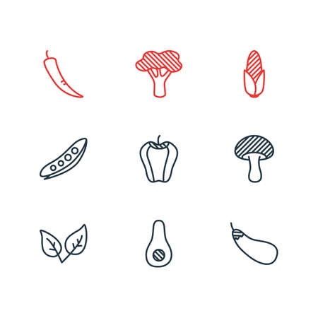 Vector Illustration Of 9 Food Icons. Editable Pack Of Aubergine, Legume, Maize And Other Elements. Illustration