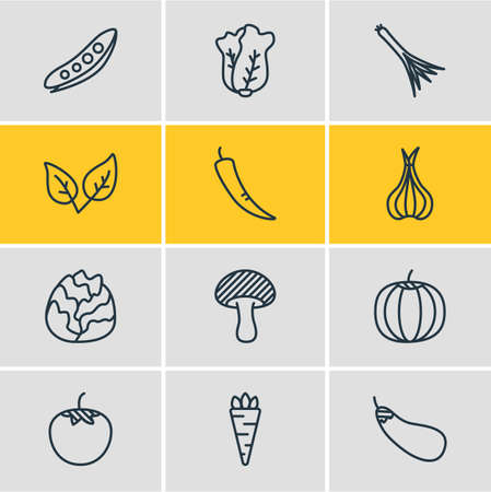 Editable Pack Of Mushroom, Paprika, Green Onion And Other Elements. Vector Illustration Of 12 Food Icons. Illustration