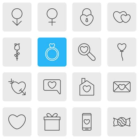 Illustration vectorielle de 16 icônes de passion. Paquet éditable de rose, cadeau, maison et autres éléments.