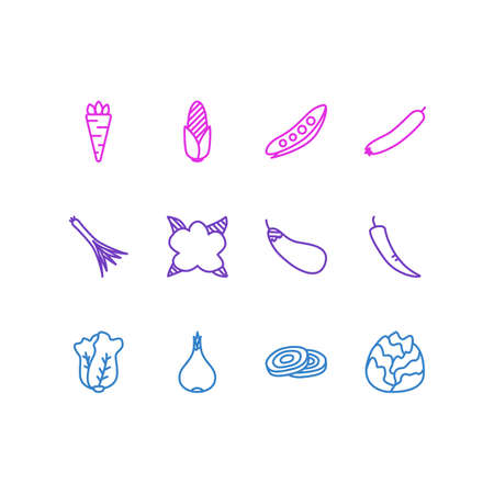 sweetcorn: Vector Illustration Of 12 Food Icons. Editable Pack Of Maize, Cole, Root Vegetable And Other Elements.
