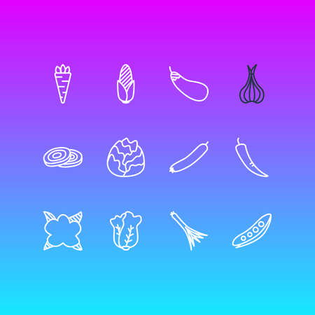 Vector Illustration Of 12 Food Icons. Editable Pack Of Aubergine, Root Vegetable, Paprika And Other Elements.