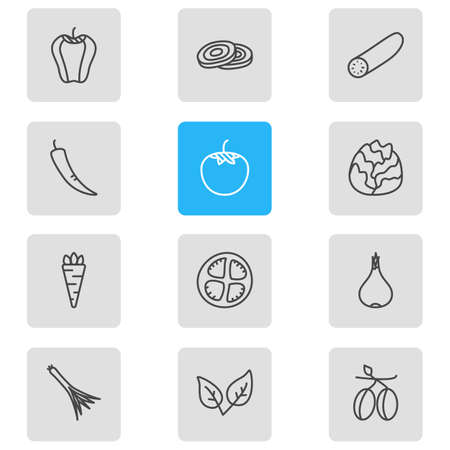 A Vector Illustration Of 12 Food Icons. Editable Pack Of Peppermint, Tomato Slice, Circles And Other Elements.