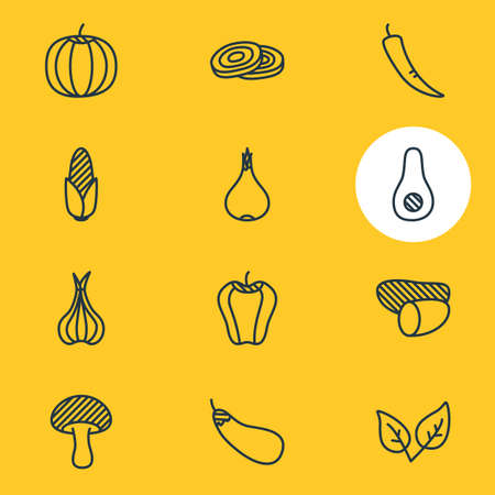 Vector Illustration Of 12 Vegetables Icons. Editable Pack Of Garlic, Mushroom, Tuber And Other Elements.