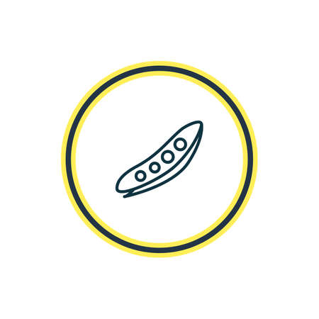 Vector illustration of pea icon line. Beautiful vegetables element also can be used as legume icon element.