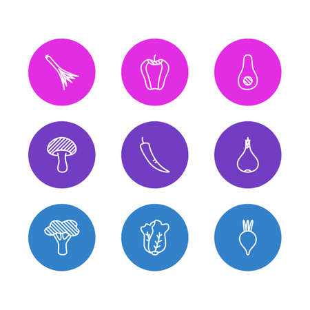 Vector illustration of 9 vegetables icons line style. Editable set of broccoli, salad, scallion and other icon elements.