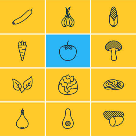 Vector illustration of 12 vegetables icons line style. Editable set of tomato, onion, avocado and other icon elements.