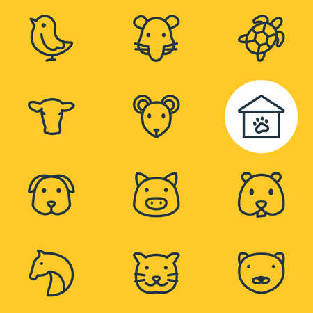 Vector illustration of 12 zoo icons line style. Editable set of mouse, rat, mink and other icon elements. Illustration