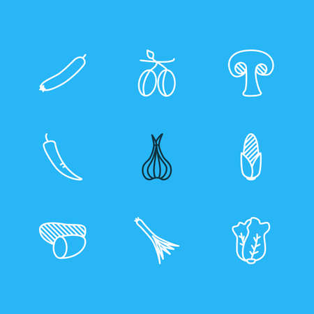 Vector illustration of 9 food icons line style. Editable set of allium, corn, scallion and other icon elements.