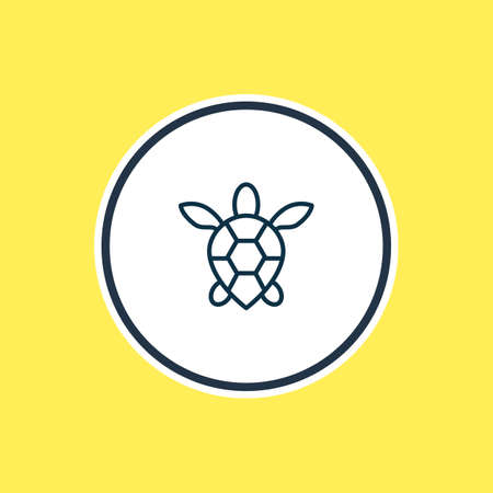 Vector illustration of sea turtle icon line. Beautiful sea element also can be used as tortoise icon element. Ilustração