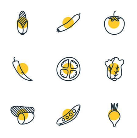 illustration of 9 vegetables icons line style. Editable set of radish, potato, vegetable and other icon elements.