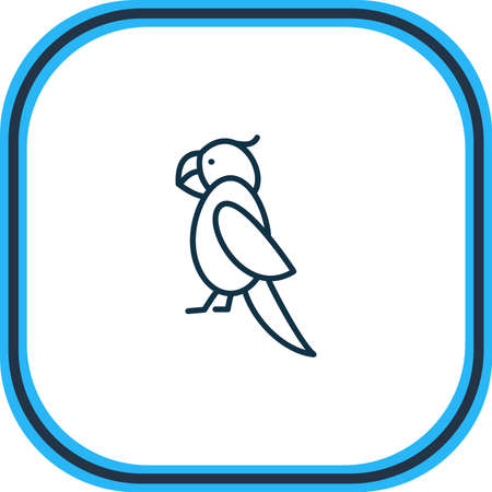 Vector illustration of parrot icon line. Beautiful zoo element also can be used as cockatoo icon element. Çizim