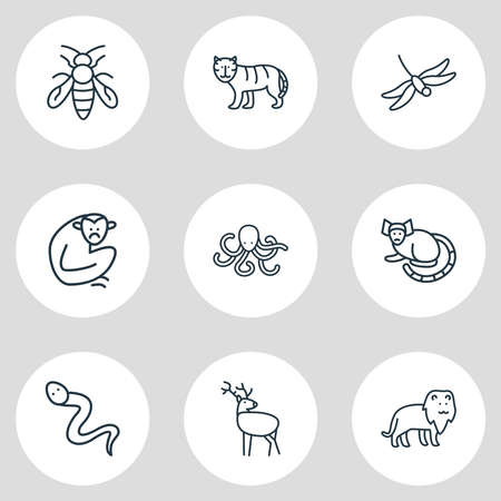 Vector illustration of 9 zoo icons line style. Editable set of octopus, dragonfly, gibbon and other icon elements. 일러스트