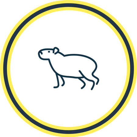 Vector illustration of capybara icon line. Beautiful zoo element also can be used as gerbil icon element.